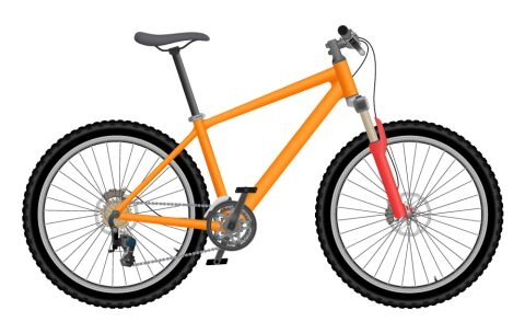 Damen-Mountainbike Blueberry